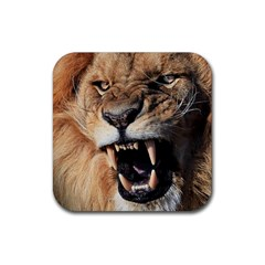Male Lion Angry Rubber Coaster (square)