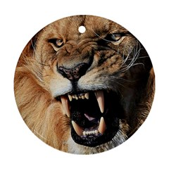 Male Lion Angry Round Ornament (two Sides)