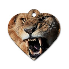 Male Lion Angry Dog Tag Heart (one Side)