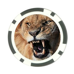 Male Lion Angry Poker Chip Card Guard