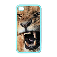 Male Lion Angry Apple Iphone 4 Case (color)