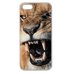 Male Lion Angry Apple Seamless Iphone 5 Case (clear)