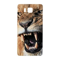 Male Lion Angry Samsung Galaxy Alpha Hardshell Back Case
