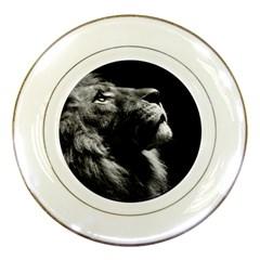 Male Lion Face Porcelain Plates