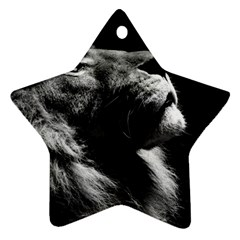 Male Lion Face Star Ornament (two Sides)
