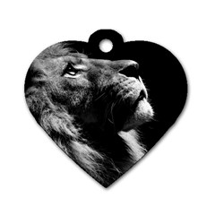 Male Lion Face Dog Tag Heart (one Side)