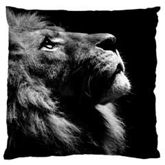 Male Lion Face Large Cushion Case (two Sides)
