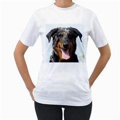 Harlequin Beauceron Women s T Shirt (white) (two Sided)
