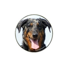Harlequin Beauceron Hat Clip Ball Marker (4 Pack)