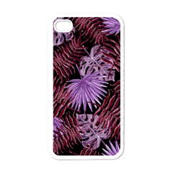 Tropical Pattern Apple Iphone 4 Case (white)