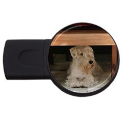 Sealyham Terrier Laying Usb Flash Drive Round (4 Gb)