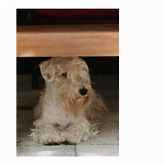 Sealyham Terrier Laying Small Garden Flag (two Sides)