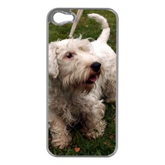 Sealyham Terrier Full Apple Iphone 5 Case (silver)