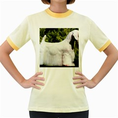 Sealyham Terrier Full 3 Women s Fitted Ringer T Shirts