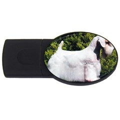 Sealyham Terrier Full 3 Usb Flash Drive Oval (4 Gb)
