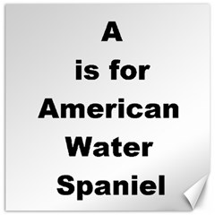 A Is For American Water Spaniel Canvas 12  X 12
