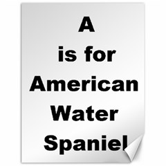 A Is For American Water Spaniel Canvas 12  X 16