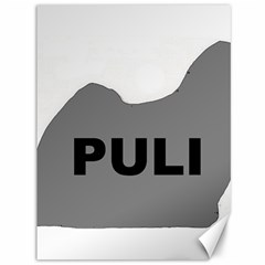 Puli Name Grey Silhouette Canvas 36  X 48