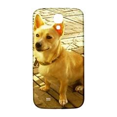 Podengo Podengo Sitting Samsung Galaxy S4 I9500/i9505  Hardshell Back Case