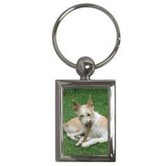 Podengo Portugues Laying Key Chains (rectangle)