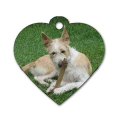 Podengo Portugues Laying Dog Tag Heart (one Side)