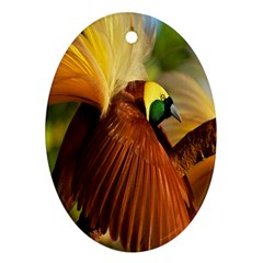 Birds Paradise Cendrawasih Ornament (oval)