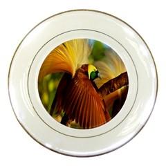 Birds Paradise Cendrawasih Porcelain Plates