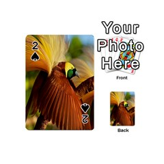 Birds Paradise Cendrawasih Playing Cards 54 (mini)
