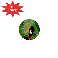 Bird Hairstyle Animals Sexy Beauty 1  Mini Magnet (10 Pack)