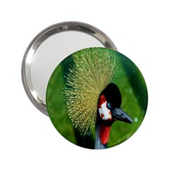 Bird Hairstyle Animals Sexy Beauty 2 25  Handbag Mirrors