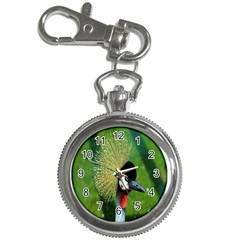 Bird Hairstyle Animals Sexy Beauty Key Chain Watches