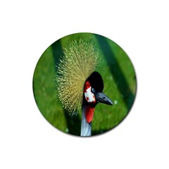 Bird Hairstyle Animals Sexy Beauty Rubber Round Coaster (4 Pack)