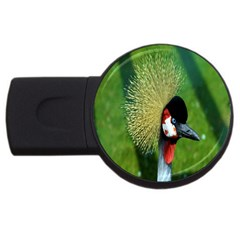 Bird Hairstyle Animals Sexy Beauty Usb Flash Drive Round (2 Gb)
