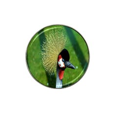 Bird Hairstyle Animals Sexy Beauty Hat Clip Ball Marker