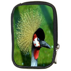 Bird Hairstyle Animals Sexy Beauty Compact Camera Cases