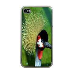 Bird Hairstyle Animals Sexy Beauty Apple Iphone 4 Case (clear)