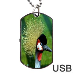 Bird Hairstyle Animals Sexy Beauty Dog Tag Usb Flash (two Sides)