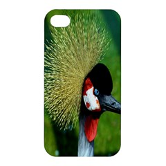Bird Hairstyle Animals Sexy Beauty Apple Iphone 4/4s Premium Hardshell Case