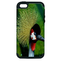 Bird Hairstyle Animals Sexy Beauty Apple Iphone 5 Hardshell Case (pc+silicone)