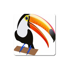 Cute Toucan Bird Cartoon Fly Square Magnet
