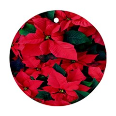 Red Poinsettia Flower Ornament (round)