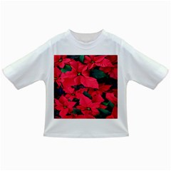 Red Poinsettia Flower Infant/toddler T Shirts