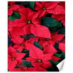Red Poinsettia Flower Canvas 16  X 20