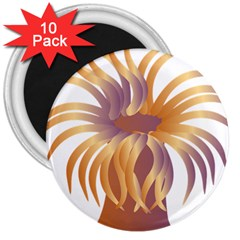 Sea Anemone 3  Magnets (10 Pack)