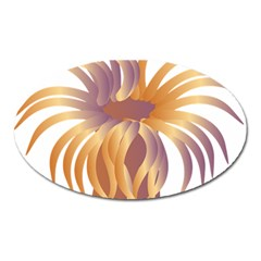 Sea Anemone Oval Magnet
