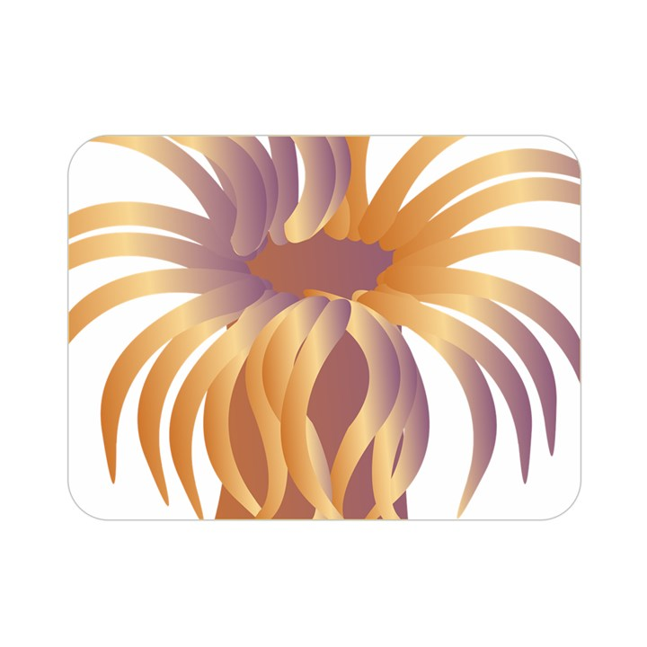 Sea Anemone Double Sided Flano Blanket (Mini)