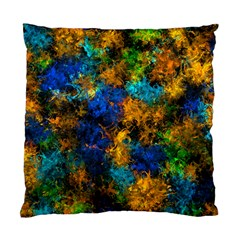 Squiggly Abstract C Standard Cushion Case (two Sides)