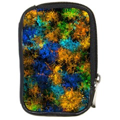 Squiggly Abstract C Compact Camera Cases