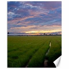 Landscape Sunset Sky Sun Alpha Canvas 16  X 20