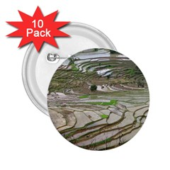Rice Fields Terraced Terrace 2 25  Buttons (10 Pack)